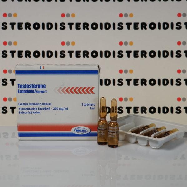 Confezione Testosterone Enanthate 250 mg Norma Hellas